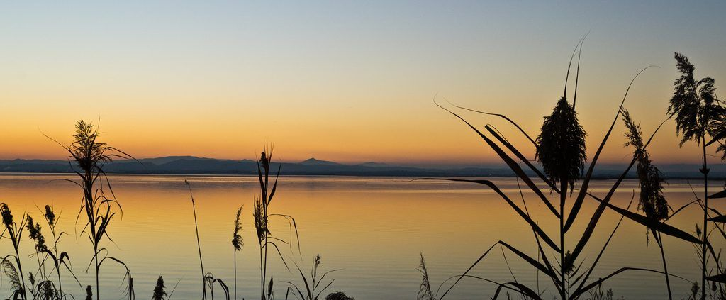 Touristic tour to the Albufera National Park Valencia