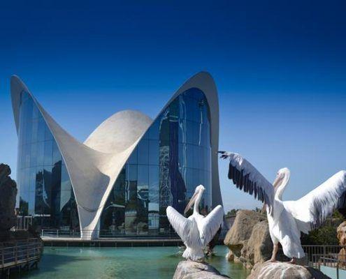 Edificio con cubierta con forma de nenúfar a la entrada del Oceanográfico de Valencia realizado por Félix Candela