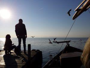 Paseo en barca por algunos de los cientos de canales del Parque Natural y lago de la Albufera a pocos kilómetros de Valencia para disfrutar del atardecer y la puesta de sol