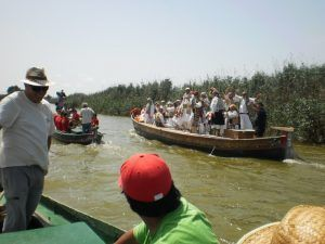 Guided tour with the boat along the canals of the Albufera Lake in Valencia to get to know this protected natural area declared a Natural Park and its endemic species.