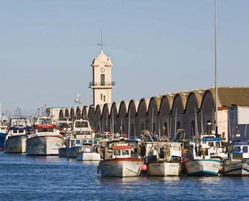 Visita guiada a la zona portuaria de Gandia para conocer la Lonja tradicional y los muelles con los barcos de pesca