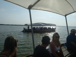 Boat ride on the canals of the Albufera of Valencia, guided tour, boat ride and visit a barraca Albufera sunset in the Albufera event